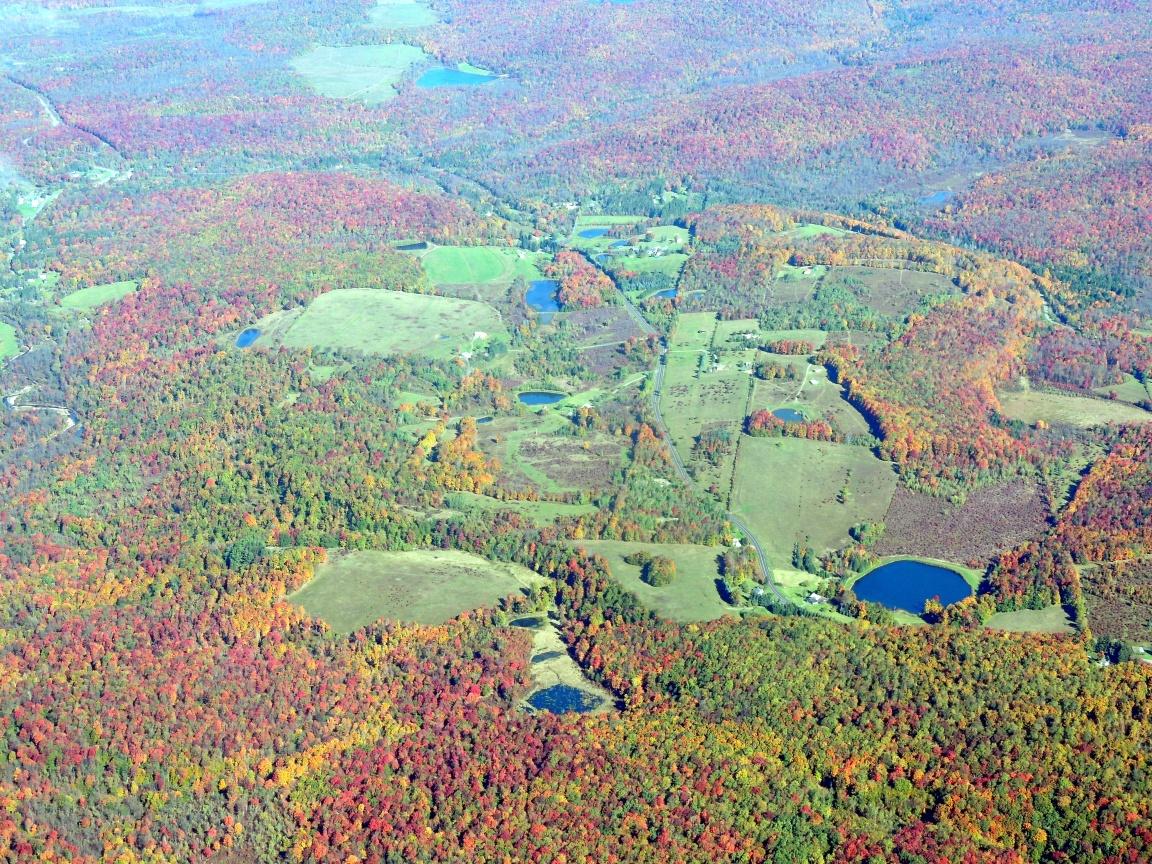 Falls Colors in PA