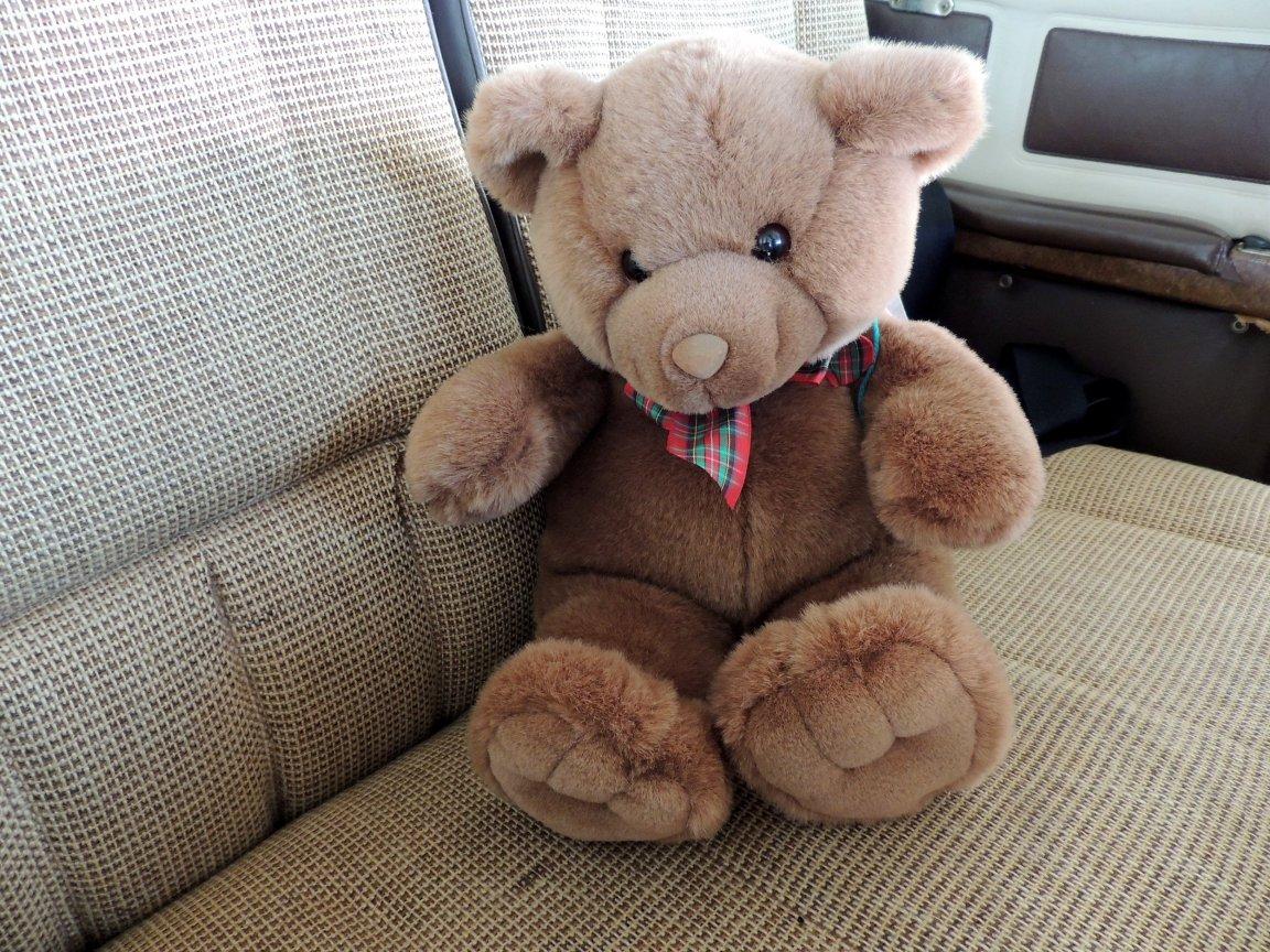 Backseat ready for Tony